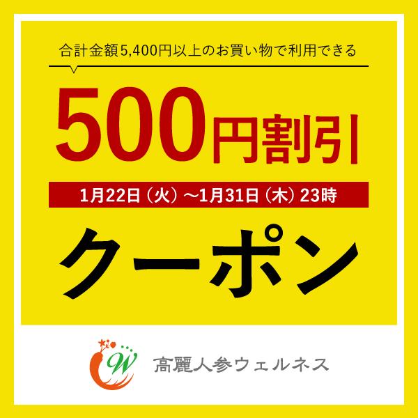 【期間限定】500円割引クーポン