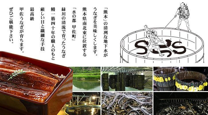 熊本で育った美味しい国産のうなぎ