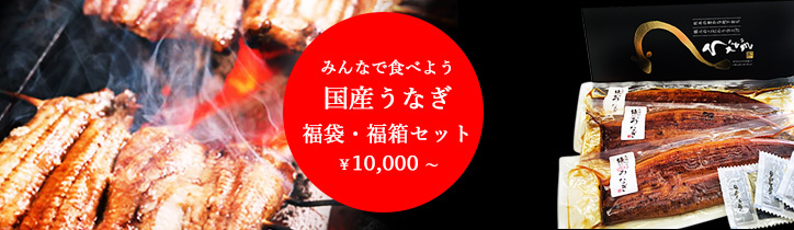 メガ盛り鰻の蒲焼き、大容量の鰻、送料無料