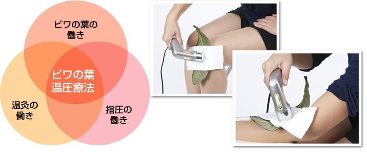 ビワの葉温圧療法から生まれた黄帝灸