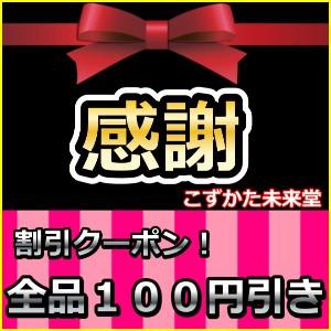商品全品100円引きクーポン