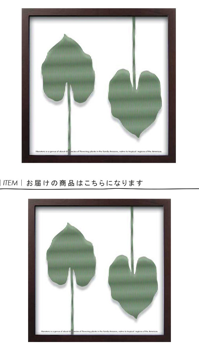 アートフレーム Silhouette Series Elephant ear leaf 1