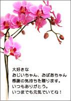 敬老の日メッセージカード1