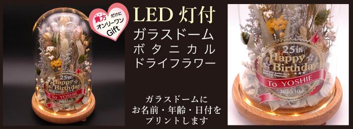 LEDガラスドームボタニカルフラワー
