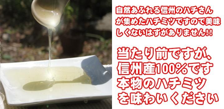 長野県産 アカシアの天然蜂蜜!!