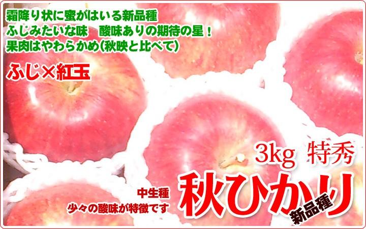 秋ひかり 中生りんご
