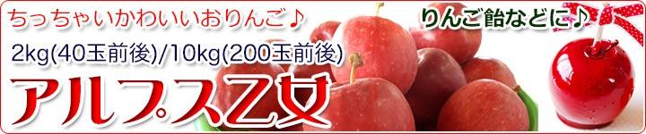アルプス乙女 かわいいミニりんご