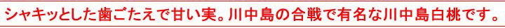 川中島の合戦で有名な白桃をお届けします!!