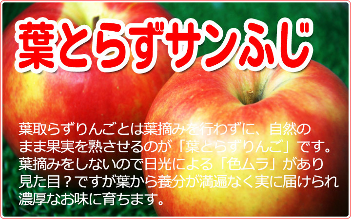 葉とらず りんご サンふじ