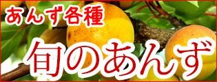 あんず 杏