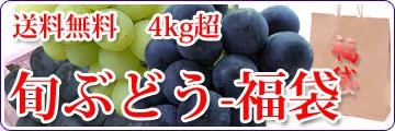 旬ぶどう-福袋4kg