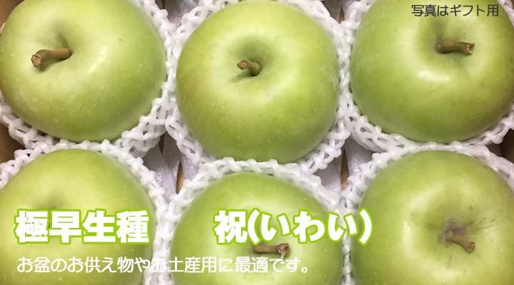 早生 青リンゴ 祝