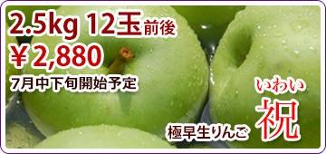 祝 いわい リンゴ 早生りんご