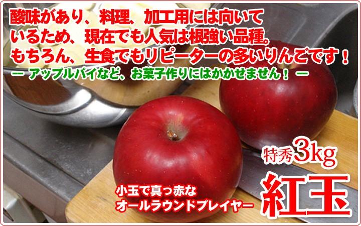 紅玉 中生りんご
