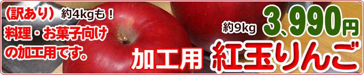 紅玉 りんご 加工用