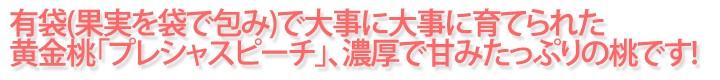 信州のプレシャスピーチ!!