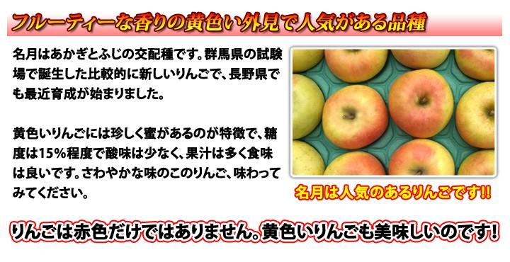 名月 家庭用 晩成りんご