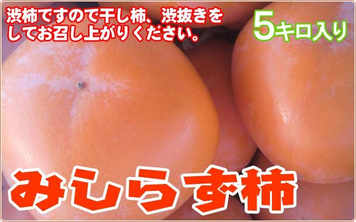 みしらず柿 渋柿