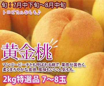 早生桃 たまき