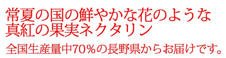 ネクタリン 長野県産