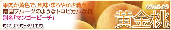 黄金桃!!