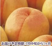 黄金桃 お中元ギフト。