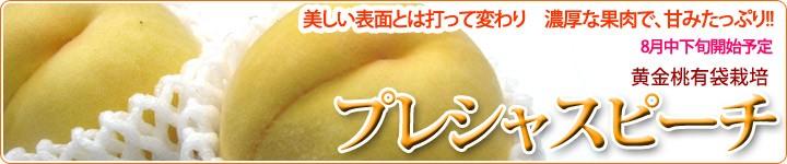 プレシャスピーチ 長野県から。!!