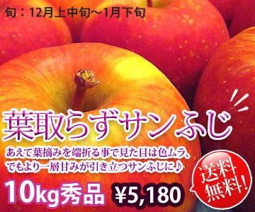 葉取らず サンふじ リンゴ