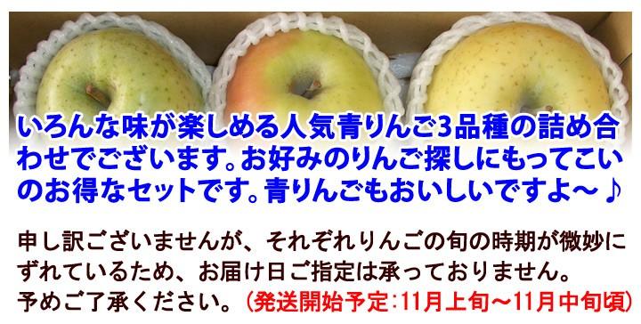 青りんごセット 名月/王林/シナノゴールド