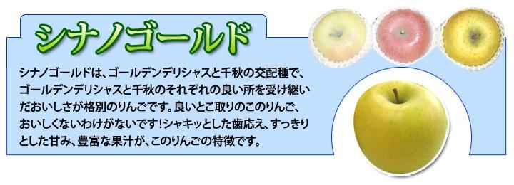 ふじ月ゴールド サンふじ/名月/シナノゴールド