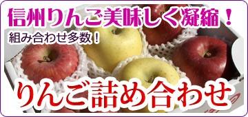 信州りんご セット