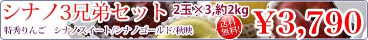 信州りんご シナノ3兄弟セット!!