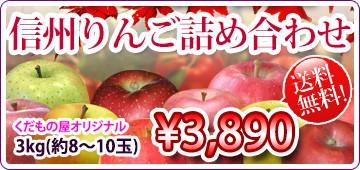 長野りんご 詰め合わせ