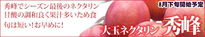 秀峰 大玉ネクタリン 生産量日本一の長野県から。!!