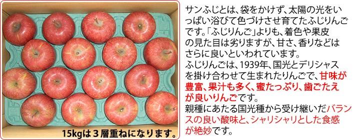 サンふじ小玉 晩成りんご