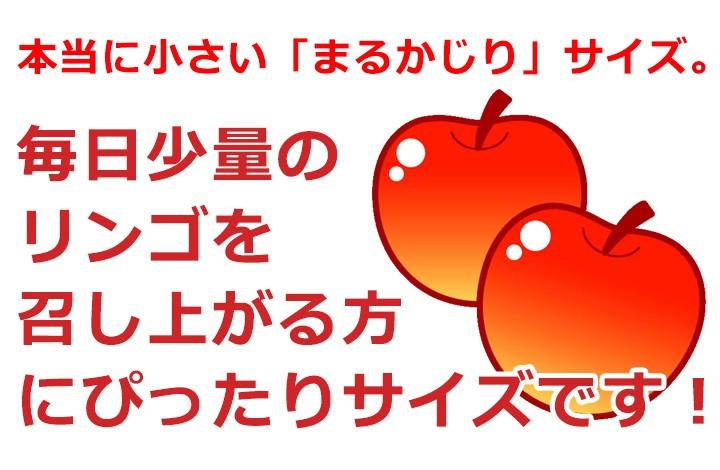 サンふじ 信州りんごの定番です!