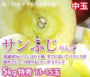 サンふじ 中玉13-15玉
