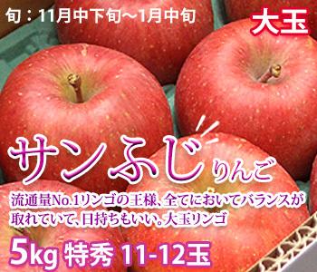 サンふじ 大玉11-12玉