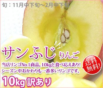 サンふじ 訳あり りんご