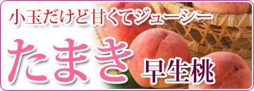たまき 早生桃