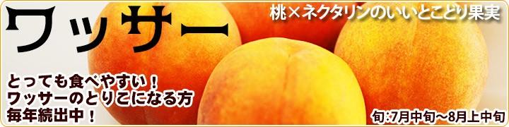 ワッサー 生産量日本一の長野県から。!!