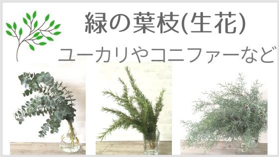 葉枝(枝物・葉物)
