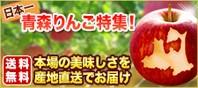 青森りんご特集
