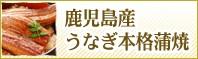 鹿児島県産うなぎ 本格蒲焼き