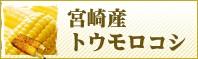 宮崎産ゴールドラッシュ
