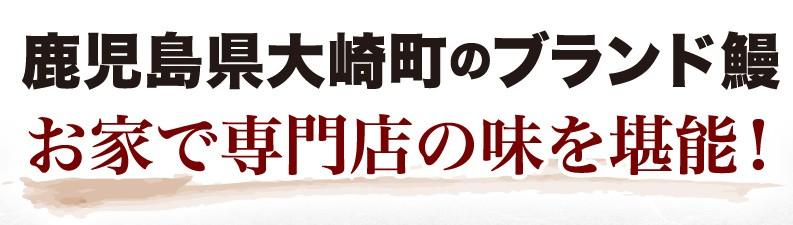 鹿児島県大崎町のブランド鰻