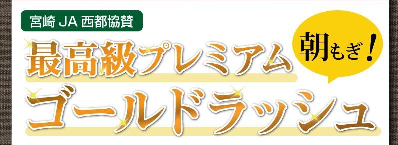 宮崎JA西都協賛。朝もぎ!最高級プレミアムゴールドラッシュ