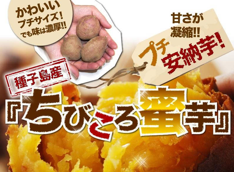 種子島産『ちびころ蜜芋』