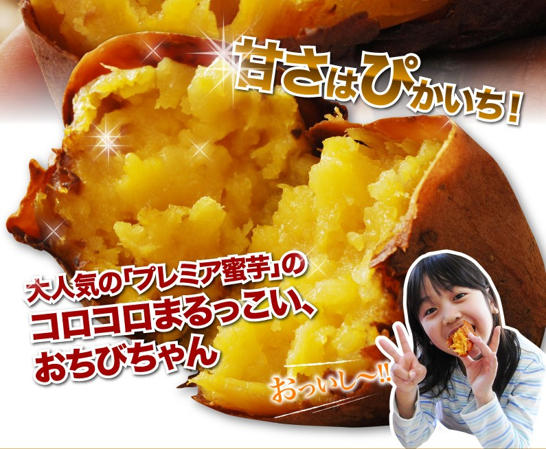 甘さはぴかいち!大人気の「プレミア蜜芋」のコロコロまるっこい、おちびちゃん