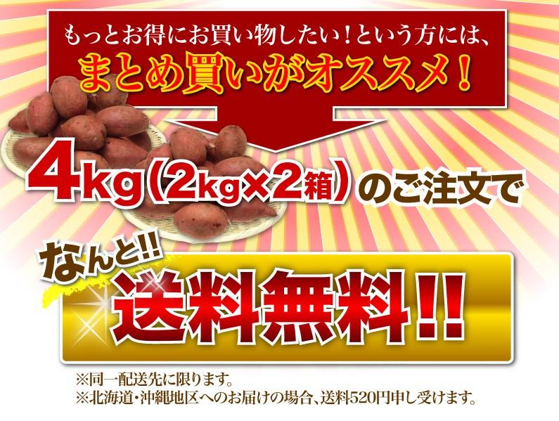 もっとお得にお買い物したい!という方には、まとめ買いがオススメ!4kg(2kgx2箱)のご注文でなんと!!送料無料!!